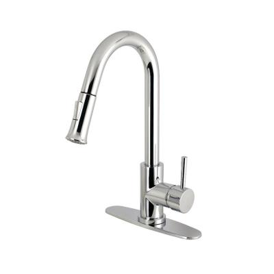 Modern Single-Handle Pull-Down Sprayer Kitchen Faucet in Chrome