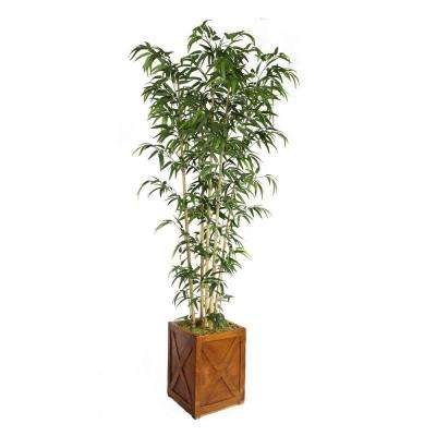 81 in. Tall Natural Bamboo Tree in 13 in. Fiberstone Planter
