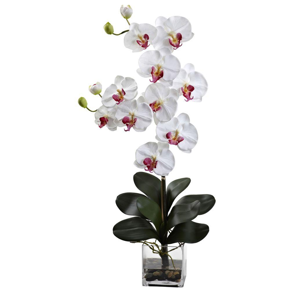 Nearly Natural Double Giant Phalaenopsis With Vase 1352 Wh The