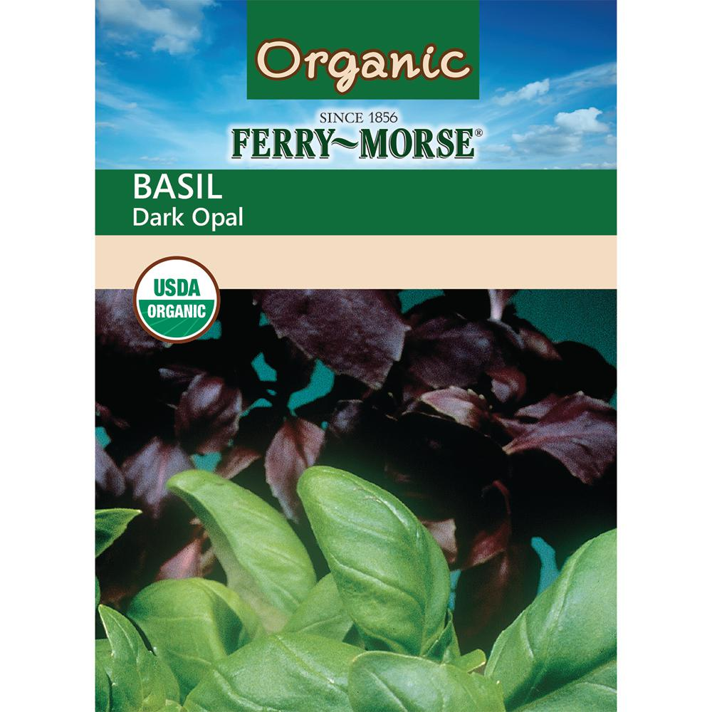 Basil Dark Opal Organic Seed