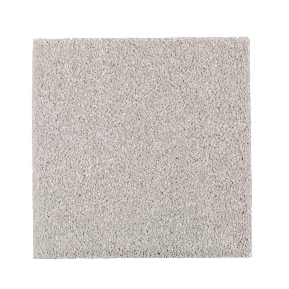 Petproof carpet sample gazelle ii color storm tossed for Pet resistant carpet