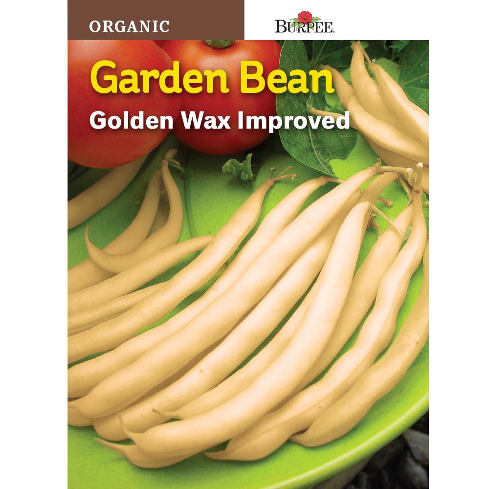 recipe: bush bean seeds home depot [12]
