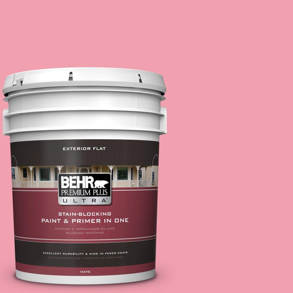 5-gal. #120B-5 Candy Coated Flat Exterior Paint