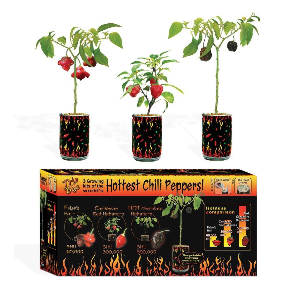 Heat Factory Magic Trio Box, Pepper Set 3