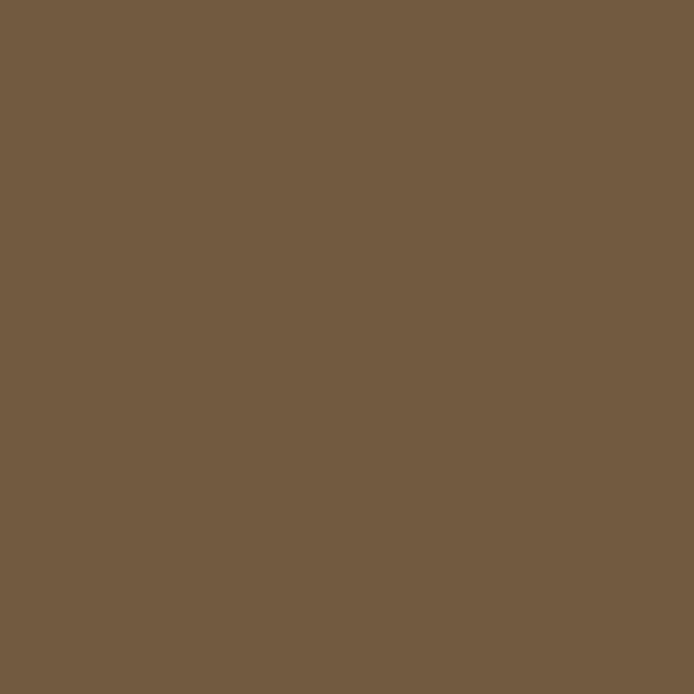 PPG TIMELESS 8 oz. #HDPPGY13 Ground Nutmeg Flat Interior ...