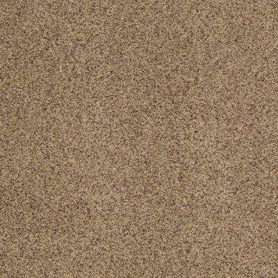 Carpet Sample - Heavenly II - Color Wheat Texture 8 in. x 8 in.