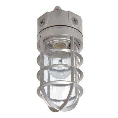 100-Watt Gray Incandescent Outdoor Flush-mount Vapor Tight Light Fixture
