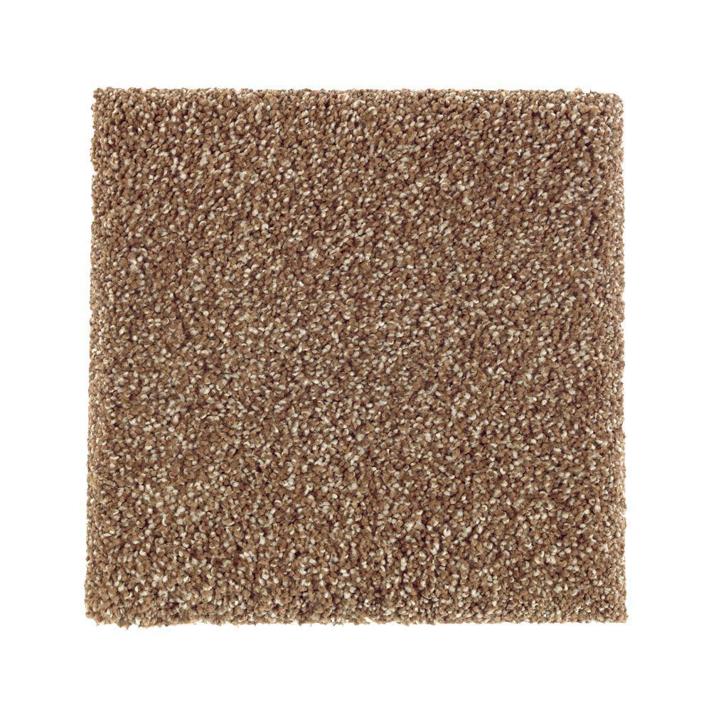 Petproof carpet sample whirlwind ii color montebello for Pet resistant carpet