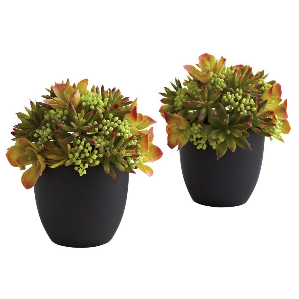 Nearly Natural Mixed Succulent with Black Planter (Set of 2)