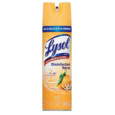 0.15 Gal. (19 fl. oz.) Citrus Meadow Scent Clear Disinfectant Spray