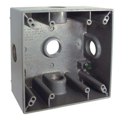 2-Gang Weatherproof Box with Five 3/4 in. Outlets