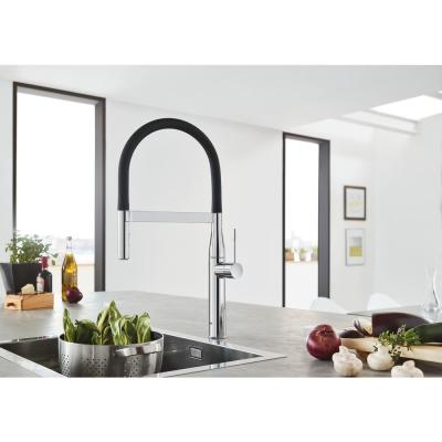 Essence New Single-Handle Pull-Down Sprayer Kitchen Faucet in Starlight Chrome