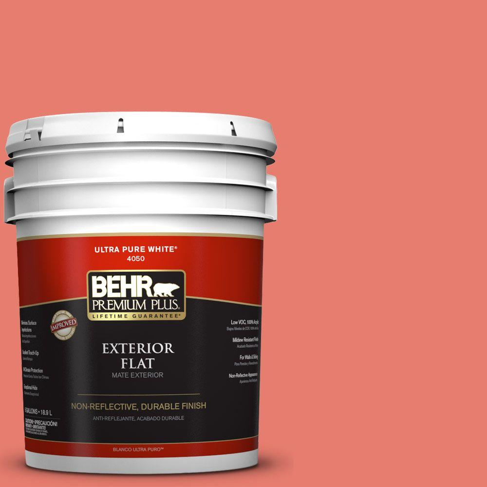5-gal. #HDC-SM14-12 Cosmic Coral Flat Exterior Paint