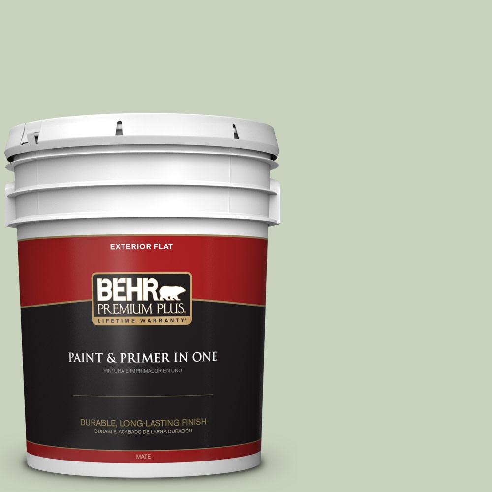 5 gal. #PPU10-09 Chinese Jade Flat Exterior Paint