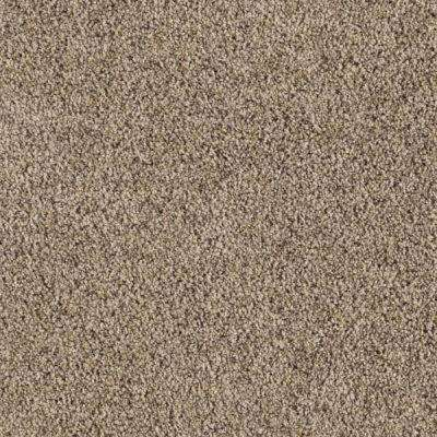 carpet sample courtlyn i color pebble path texture 8 in x 8 in