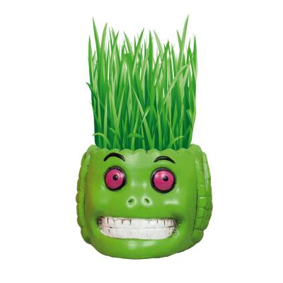 1 Qt. Hair Growing Halloween Green Monster Kit Barley Grass
