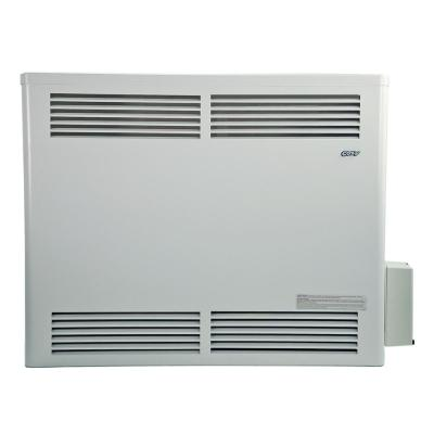 30,000 BTU Direct-Vent Natural Gas Wall Furnace with Pilot Pro Battery-Ignition Pilot System