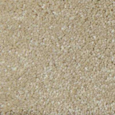 Carpet Sample - Appalachi II (S), (F) - Color Footpath (S) Texture 8 in. x 8 in.
