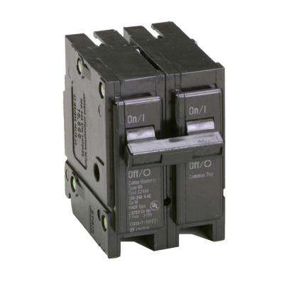 100 Amp Double-Pole Type BR Circuit Breaker