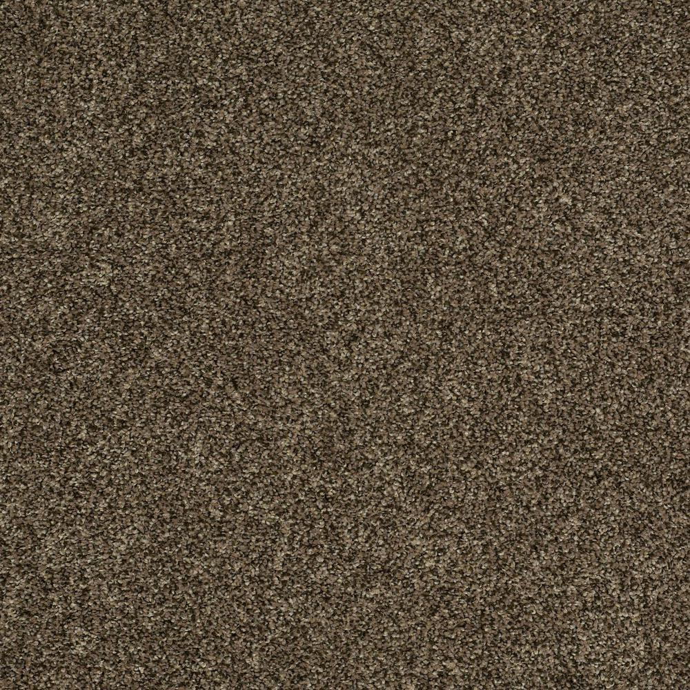 Home Decorators Collection Carpet Sample Slingshot I