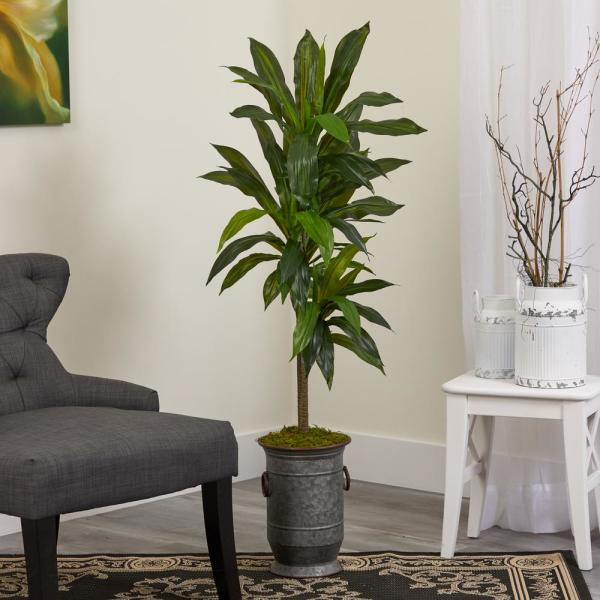 4 ft. Dracaena Artificial Plant in Vintage Metal Planter (Real Touch)