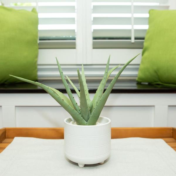 10 in. Artifical Aloe in 5 in. Barcode Footed Ceramic Pot