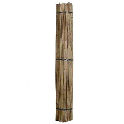 6 ft. x 1/2 in. Natural Bamboo (Package of 250)