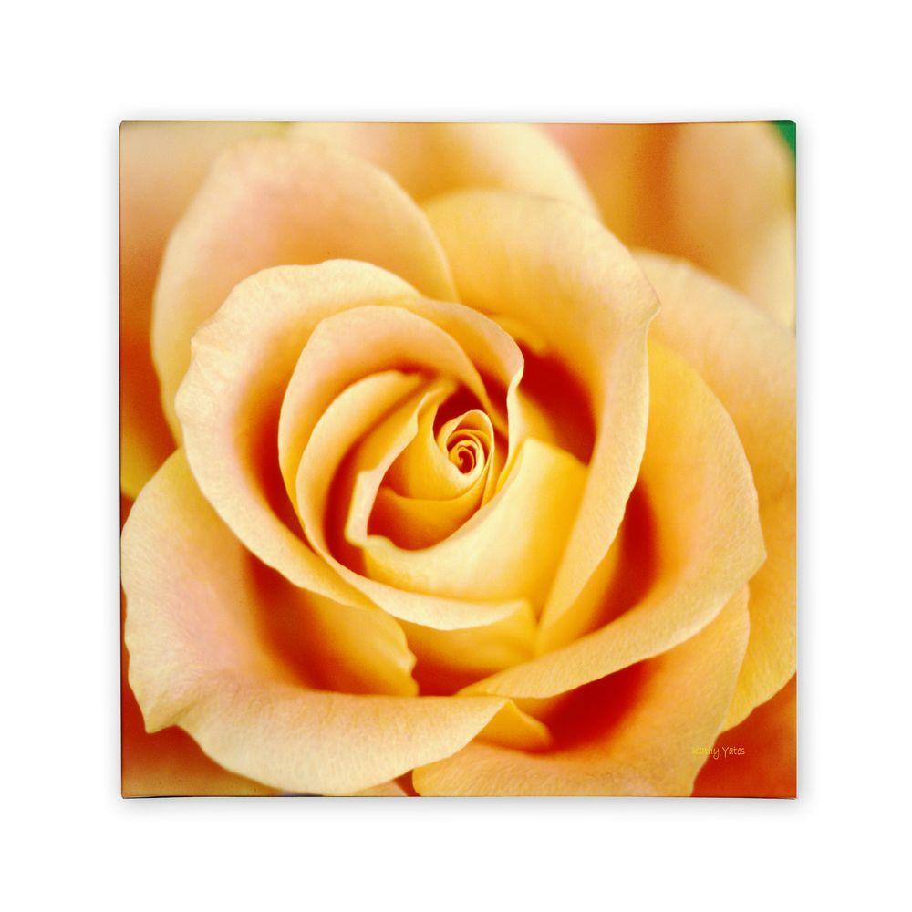 Trademark Fine Art 14 in. x 14 in. Antique Rose Canvas Art