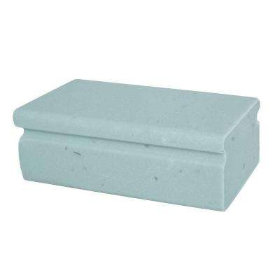 Deicer Bricks (6-Pack)