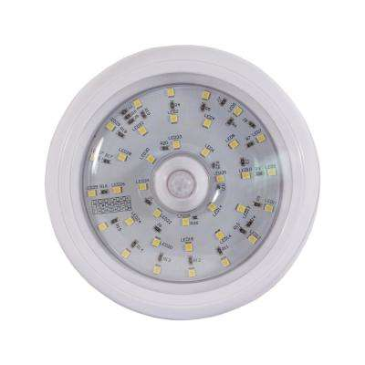 5 in. Round LED Interior Dome Light