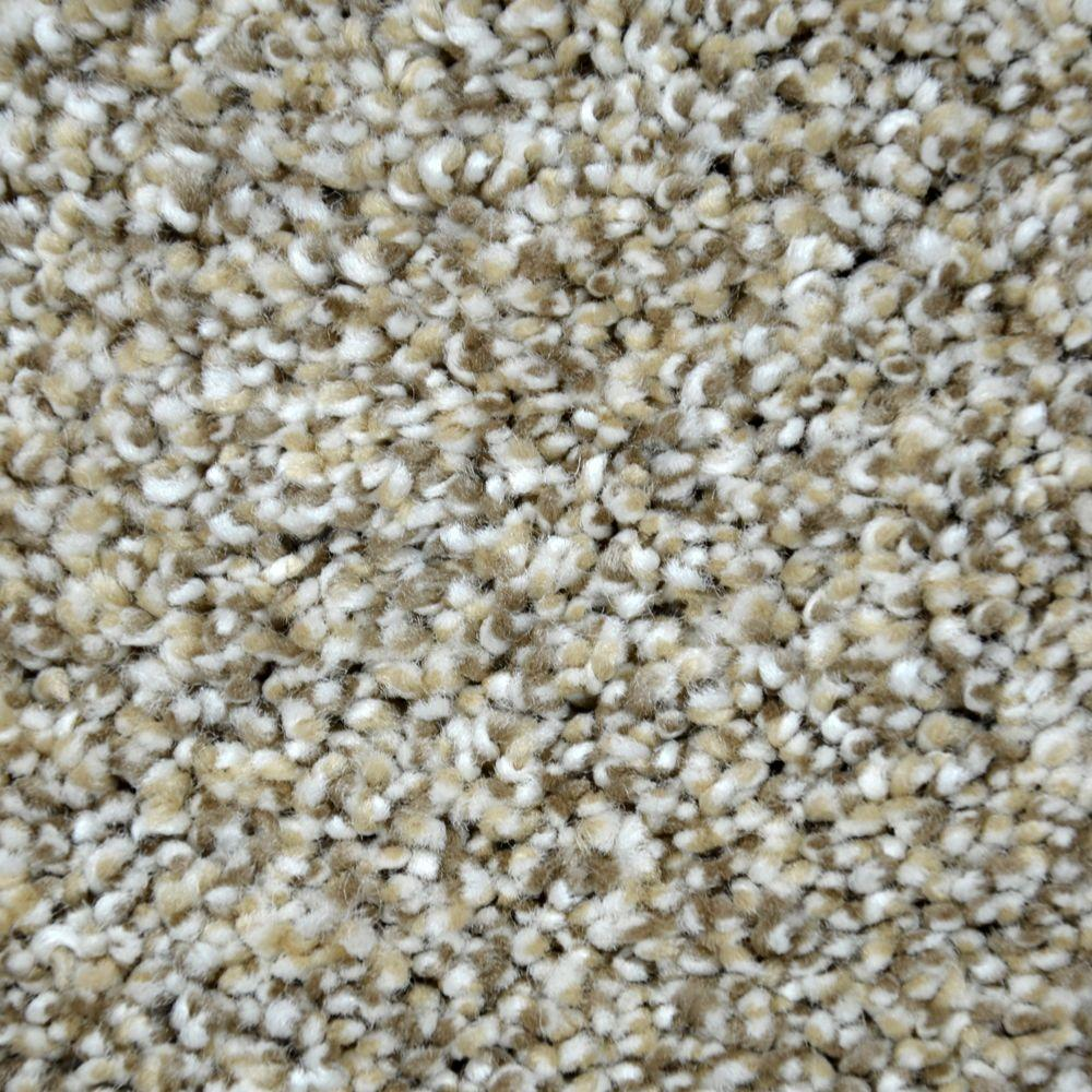 Lifeproof Carpet Sample True Classic I Color Elgin