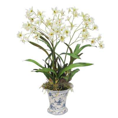 29 in. Dancing Orchid in French Toile Pot
