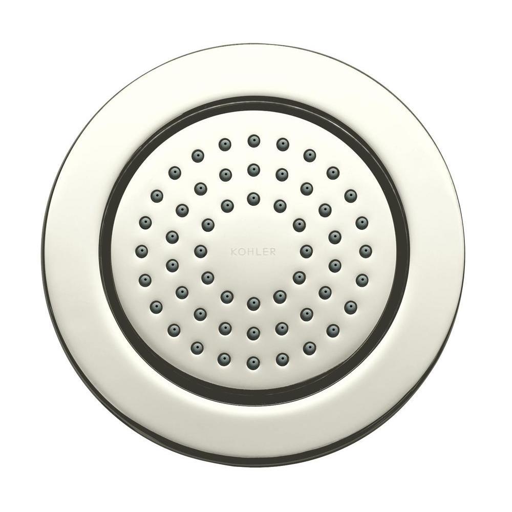 KOHLER WaterTile 4.875 in. 1-spray Single Function 54-Nozzle Round Body Sprayer in Vibrant Polished Nickel