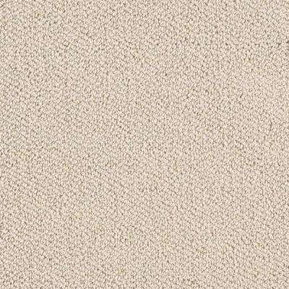 Carpet Sample - Lower Treasure - Color Dreamland Loop 8 in. x 8 in.