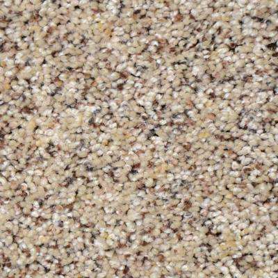 Carpet Sample - Nevada - Color Golden Chain Texture 8 in. x 8 in.
