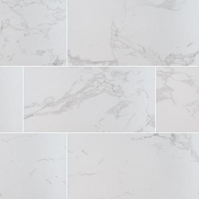 Msi Praia Carrara 24 In X 48 In Matte Porcelain Floor And Wall Tile 7 Cases 112 Sq Ft Pallet Npracar2448 The Home Depot
