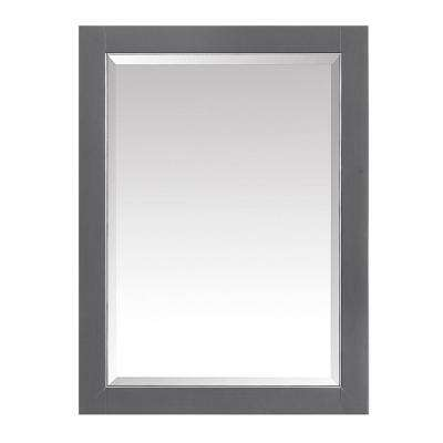 Allie 22 in. x 28 in. Surface Mount Medicine Cabinet in Twilight Gray Finish with Gold Trim