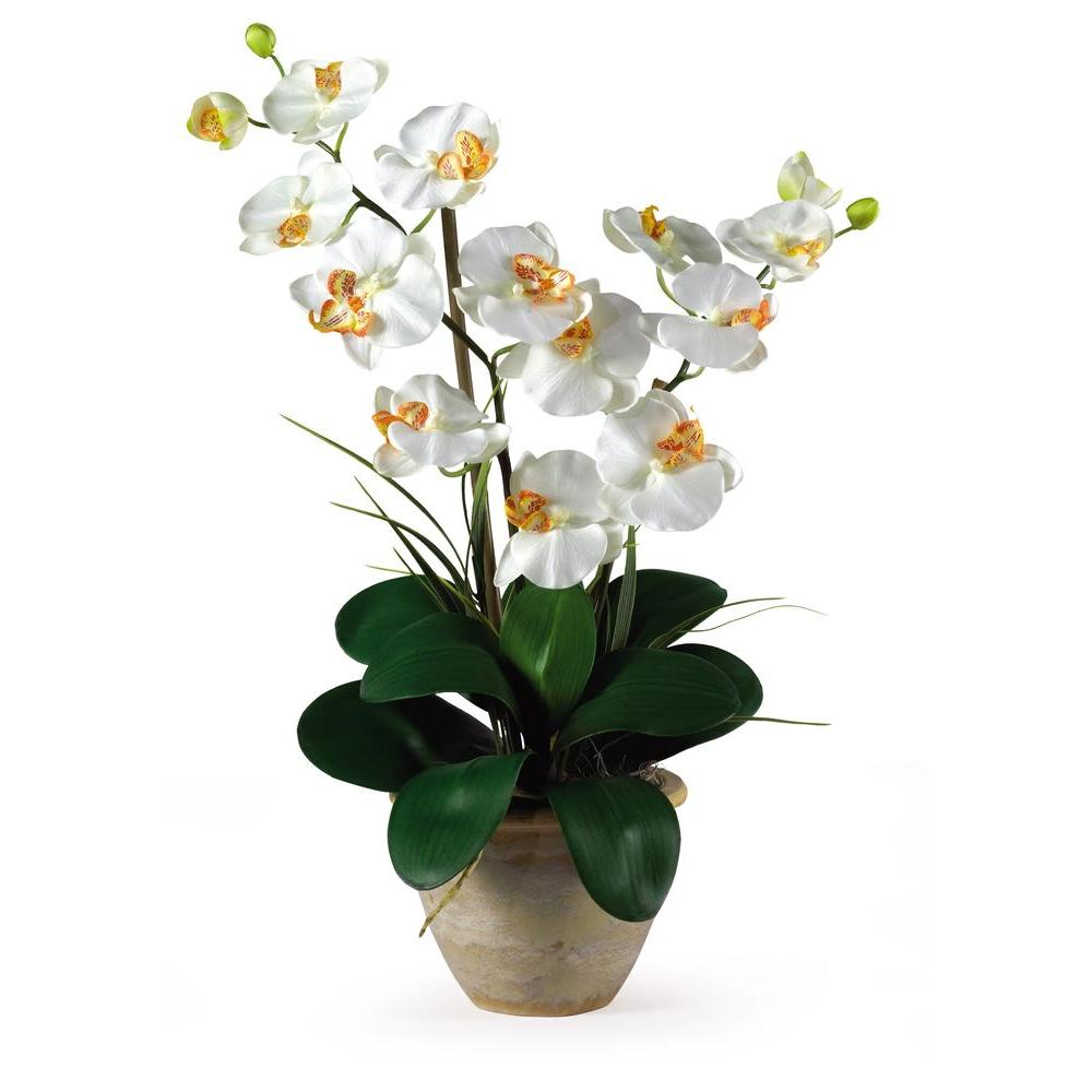 Nearly Natural 25 in. Double Stem Phalaenopsis Silk Orchid Flower Arrangement