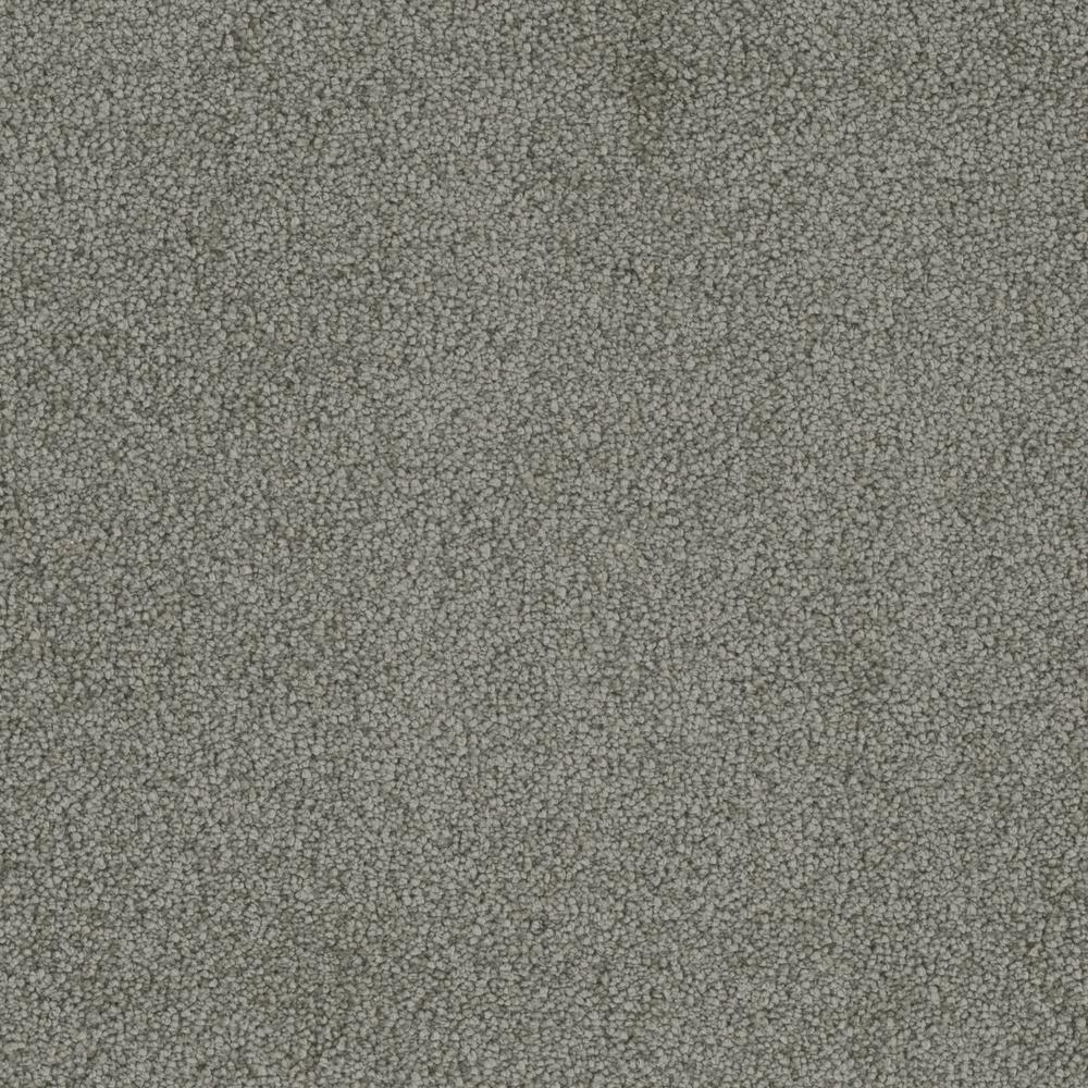 Sweet Dreams I - Color Platinum SuperSoft Cut Pile 12 ft. Carpet