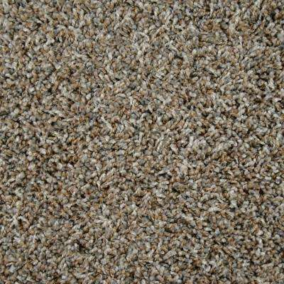 Carpet Sample - Captivating - Color Eden Prairie Twist 8 in. x 8 in.