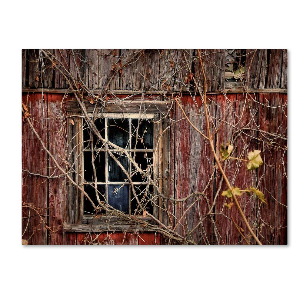 14 in. x 19 in. Old Barn Window Canvas Art