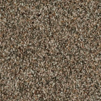 Playful Moments II - Pecan Bark Textured Multi 12 ft. Carpet
