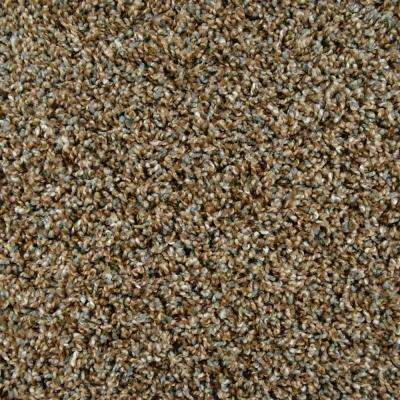 Carpet Sample - Captivating - Color Crown Point Twist 8 in. x 8 in.
