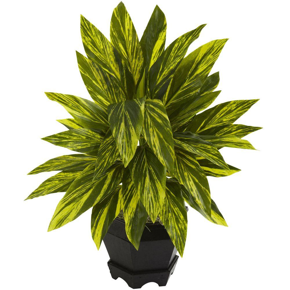 Nearly Natural Ginger Plant with Black Planter6789 The Home Depot