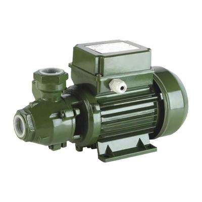 0.5 HP Peripheral Pumps