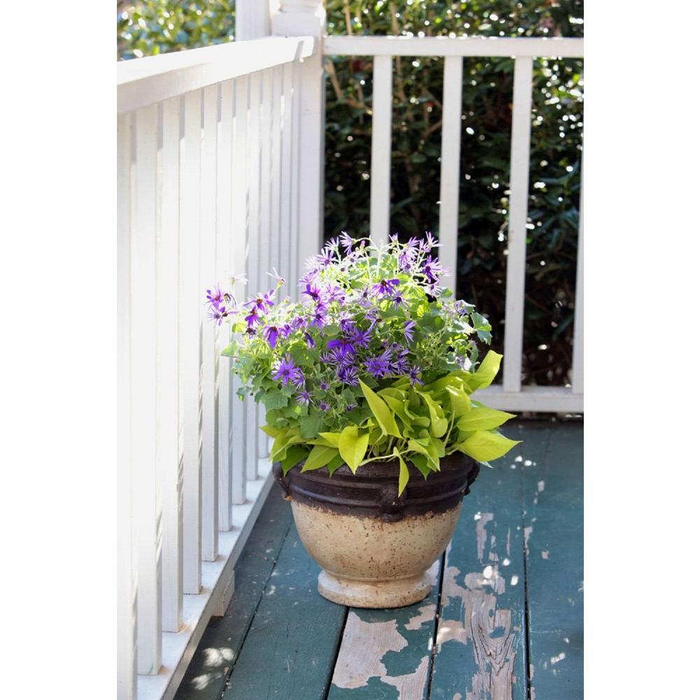 Pennington 13 In Paper Mache Troy Planter 100511811 The Home Depot