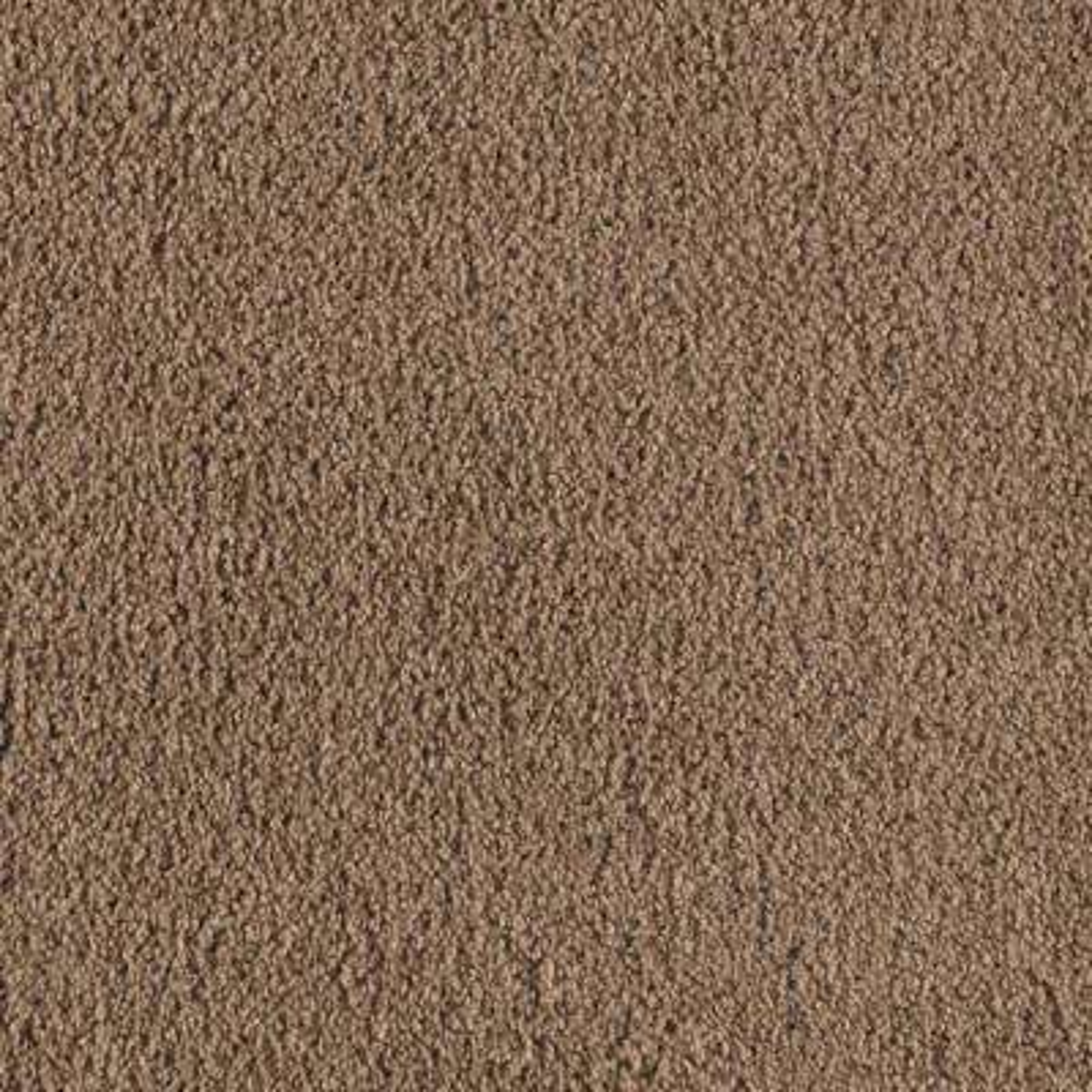 Carpet Sample - Collinger II Color - Ashen Texture 8 in. x 8 in.