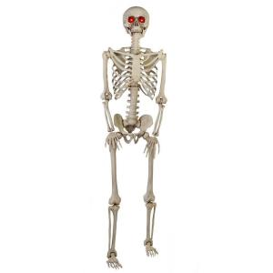 5 ft. Poseable Skeleton with LED Illumination
