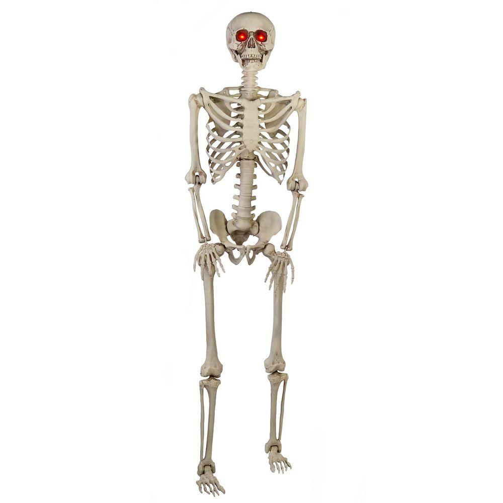 Home Accents Holiday 5 ft. Poseable Skeleton with LED Illumination ...