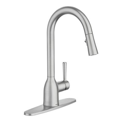 Adler Single-Handle Pull-Down Sprayer Kitchen Faucet with Power Clean and Reflex in Spot Resist Stainless